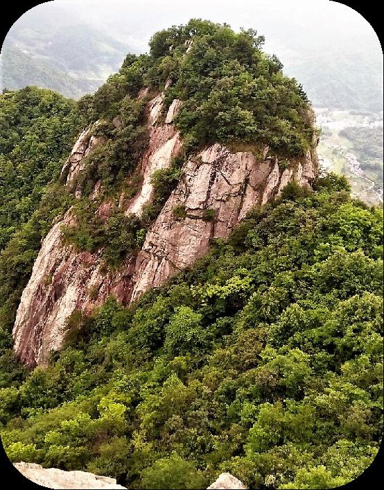 金寨昭君寨534.png