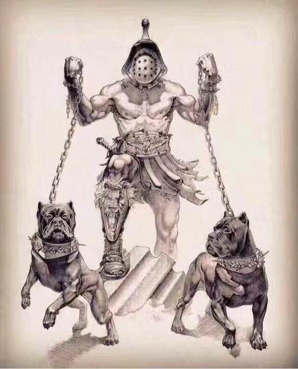 卡斯罗天生就有最佳护卫犬的血统