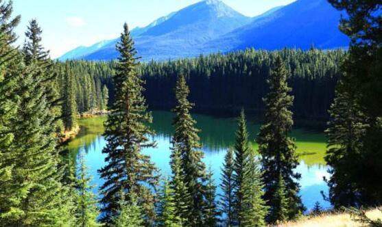 加拿大旅游自助游攻略2.jpg
