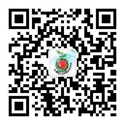 微信图片_20180706144601.jpg